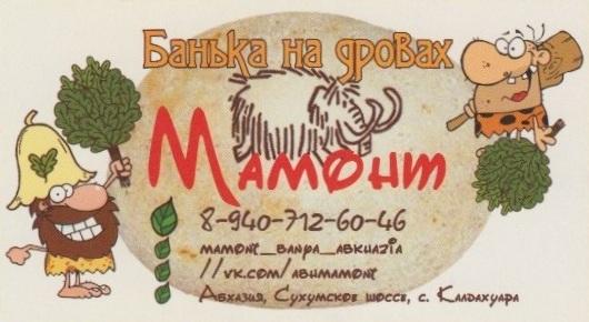 Баня Мамонт Гудаута