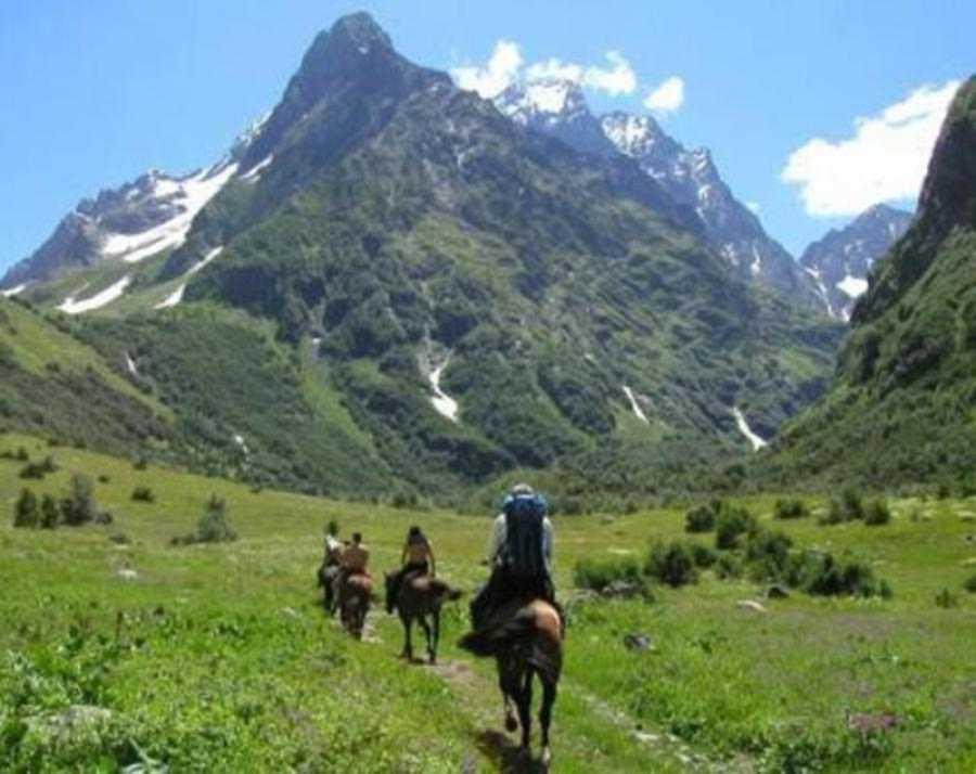 Отдых Абхазия