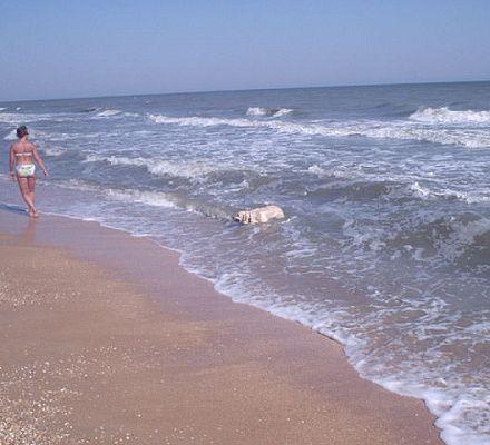 Наташка Хорошо Отдохнула На Пляже С Тремя Друзьями